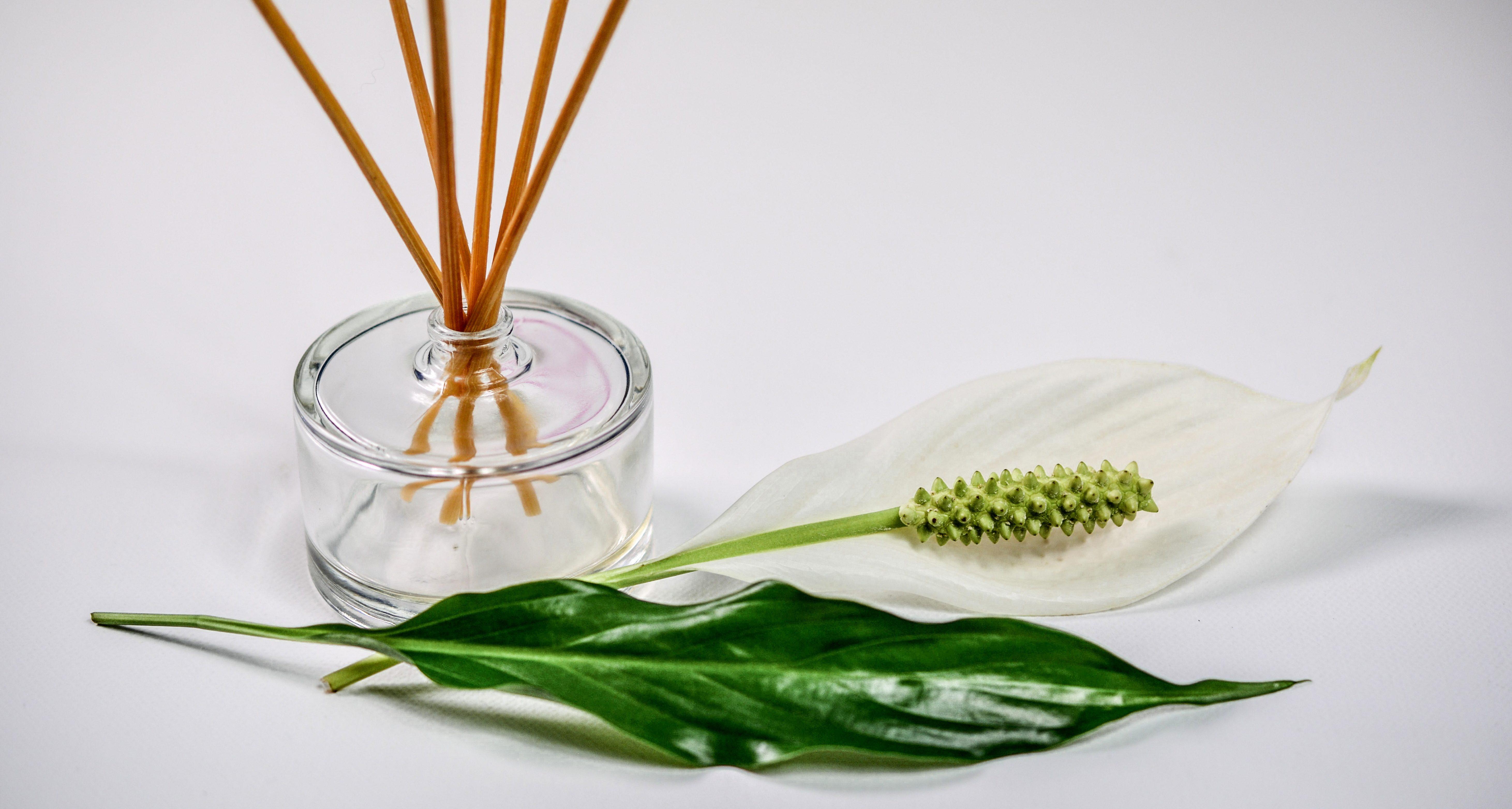 Scent olfactory branding