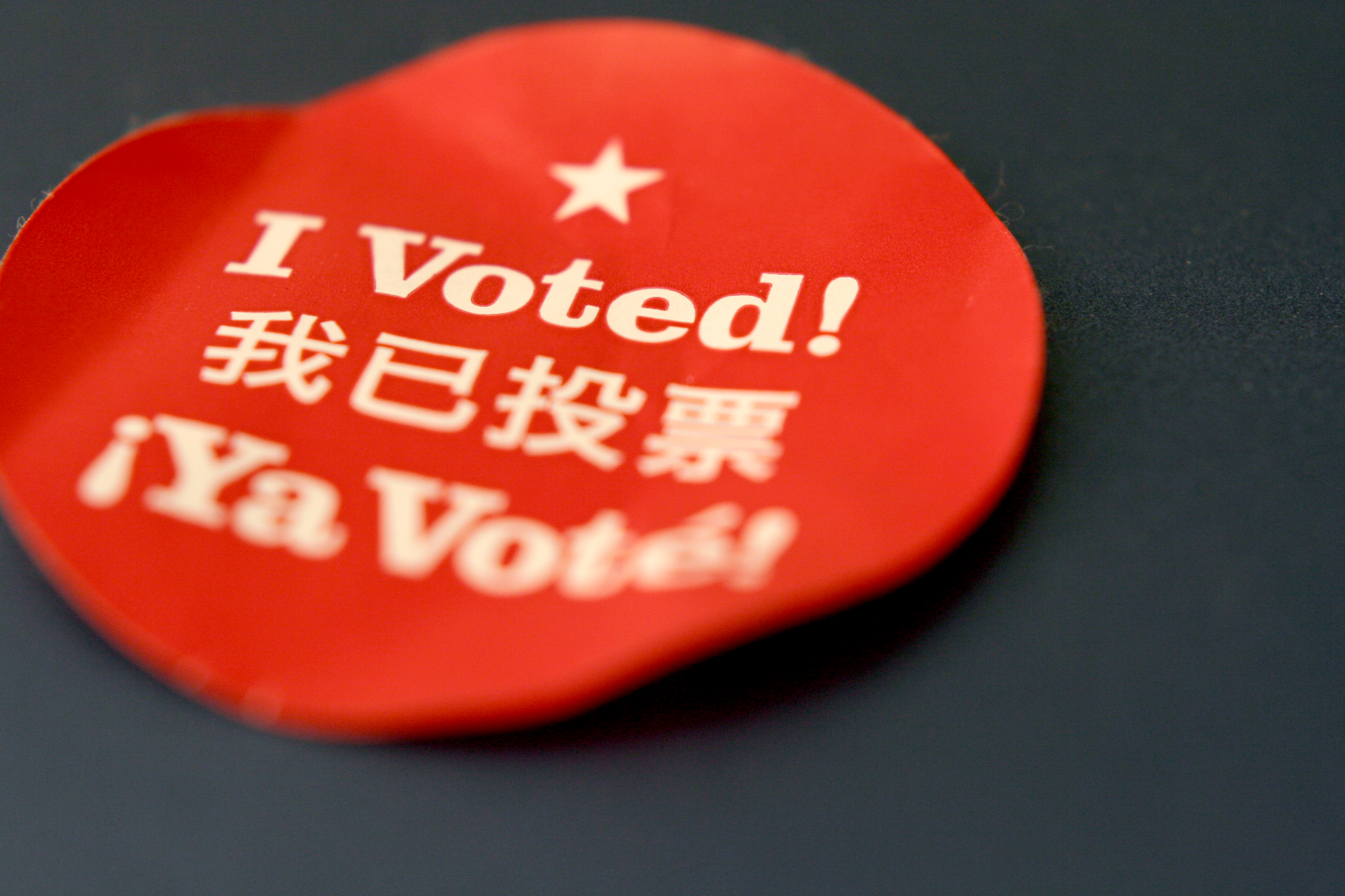 I voted sticker election